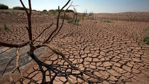 drought-2