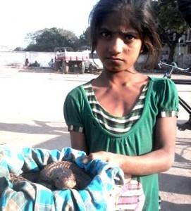 12-02-15 Mano Banda - Snake Girl for web