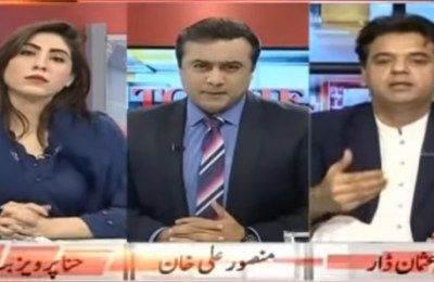 Hina Pervez Butt, PML-N, MPA, YouTube, Mansoor Ali Khan