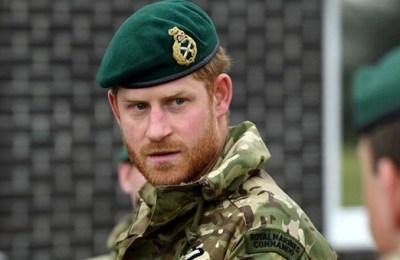 Prince Harry, COVID-19, Coronavirus, British Army