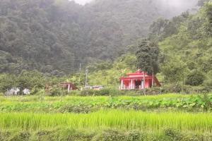 उत्तराखण्ड का एक मात्र मन्दिर जहाँ देवी पूजी जाती है,आमा के रुप में