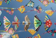 kite-in-makar-sankranti-2020