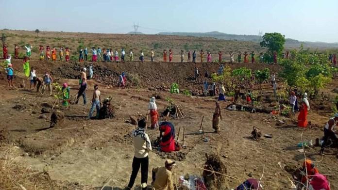 Seoni: 1 lakh 11 thousand 934 workers got employment under MNREGA