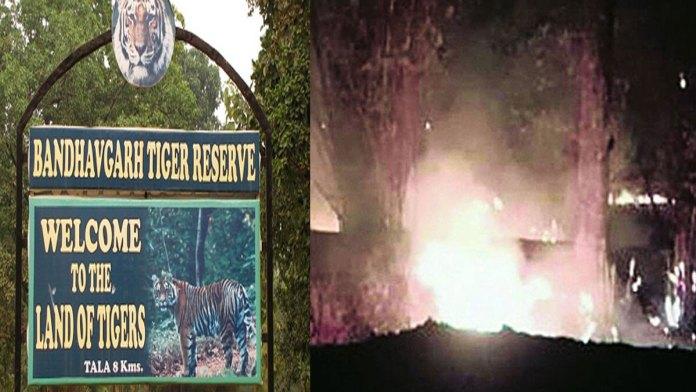 fire in bandhavgarh national park