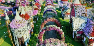 Some of the best and beautiful Parks and Gardens in Dubai