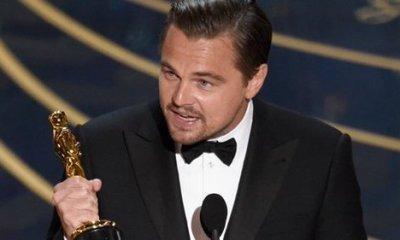 OSCARS Complete list of 88th annual Academy Award winners