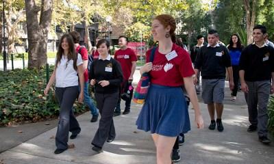 Macquarie University Australia Vice Chancellor International Scholarship