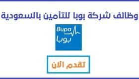 بوبا للتأمين تعلن 7 وظائف إدارية للرجال والنساء بدون خبرة