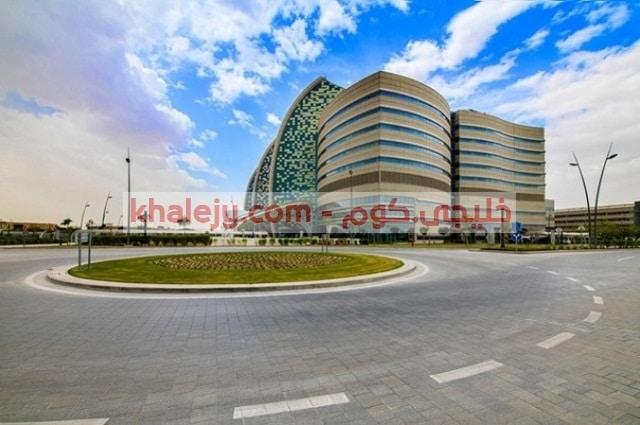 سدرة للطب وظائف شاغرة في قطر جميع التخصصات