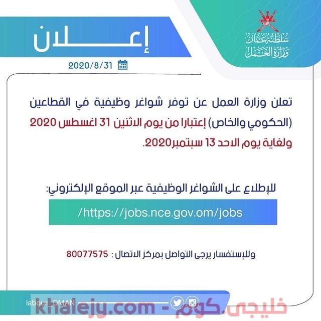 وزارة العمل وظائف حكومية وشركات