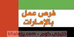 وظائف الامارات للمصريين اليوم في جميع التخصصات