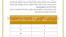 جدارة الوظائف الإدارية للنساء والرجال وزارة الصناعة