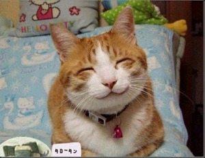 8 Foto Hewan Lucu yang Sedang Tersenyum