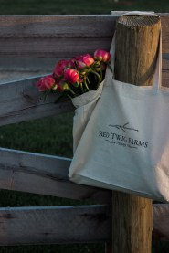 Red Twig Farms // VIP Event