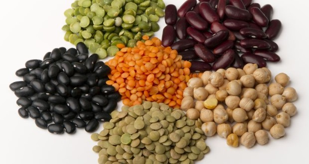 These are beans, lentil sprout (lentil bud) Lima (Lima beans) as well as pea.