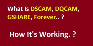 What Is DSCAM DQCAM