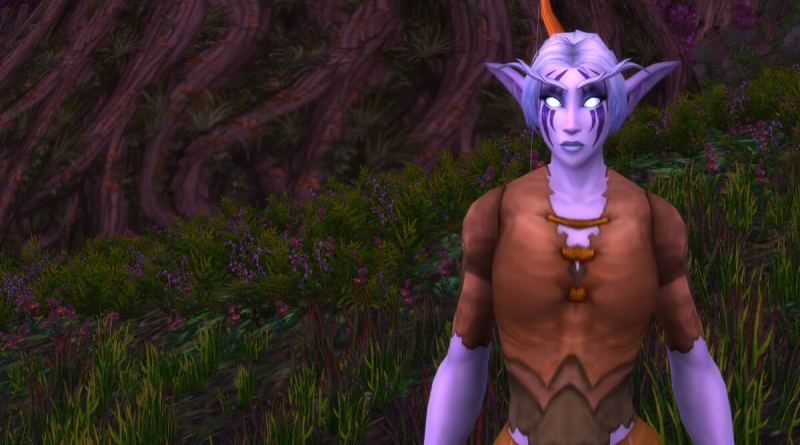 WoW Iron Man Challenge - Night Elf Hunter - Nehiron