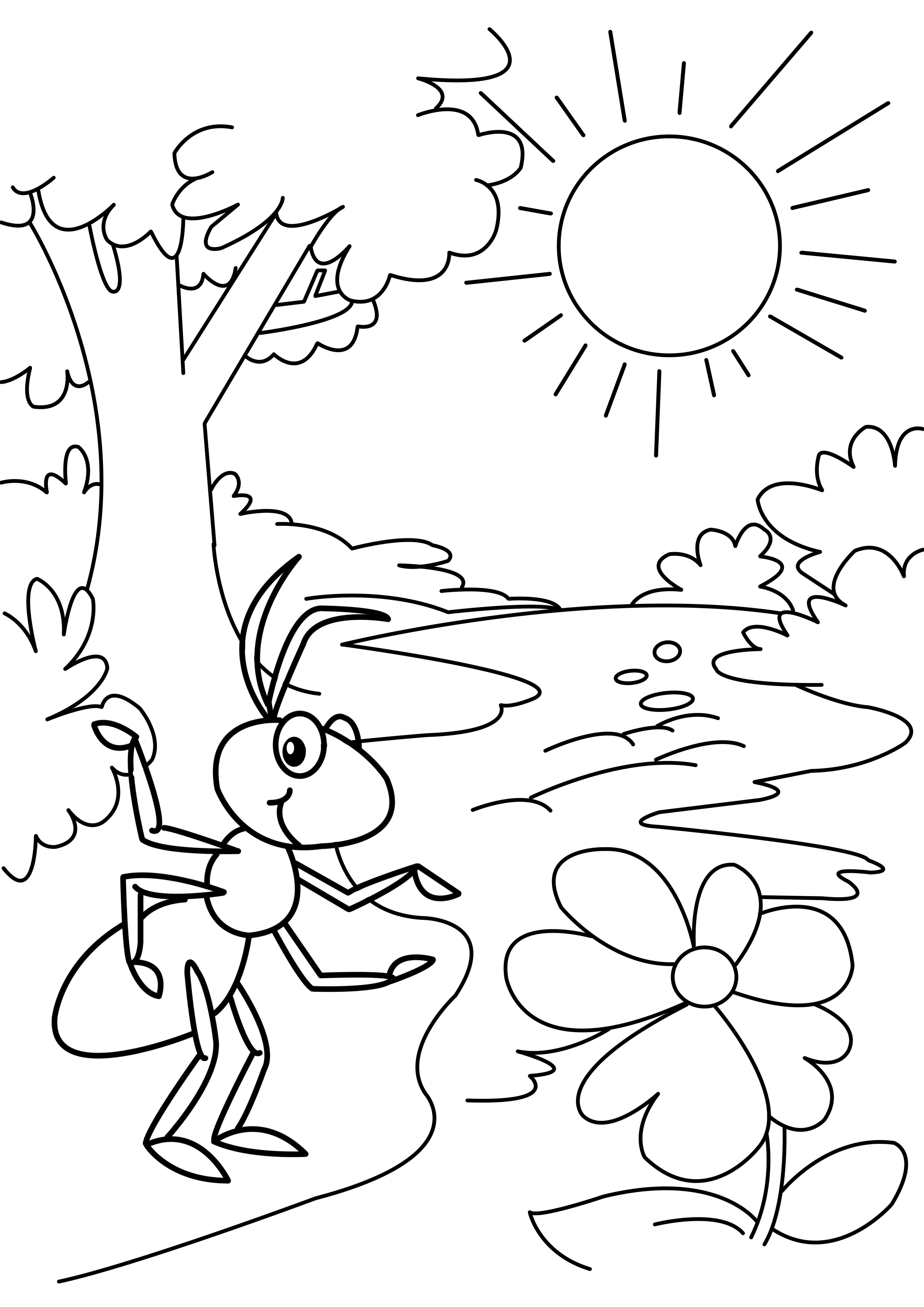 Drawings For Activity Booklet