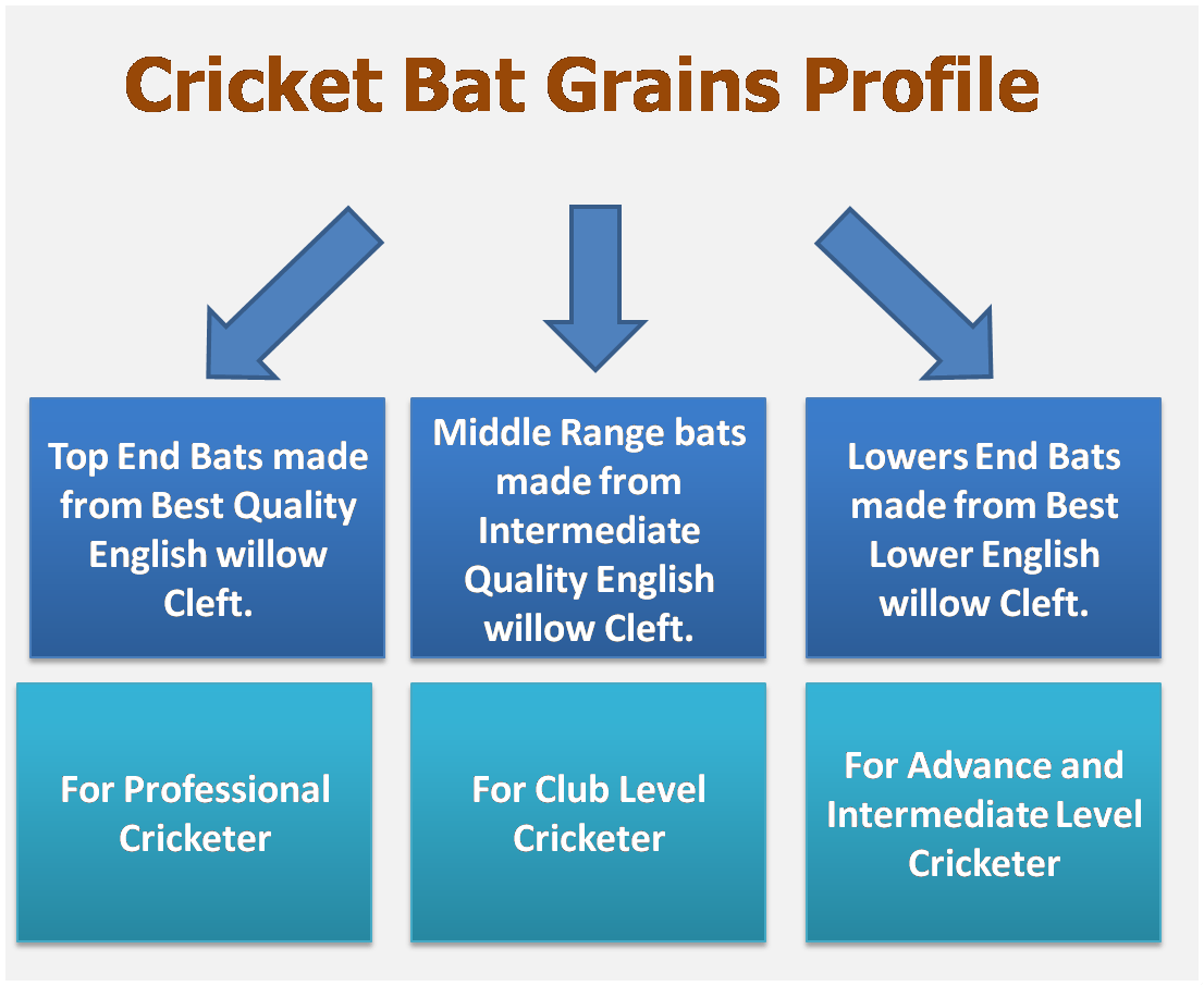 Cricket bat Grains Concept - English Willow Clefts