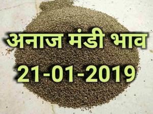 anaj-mandi-bhav-21-january-2019 , mandi rates