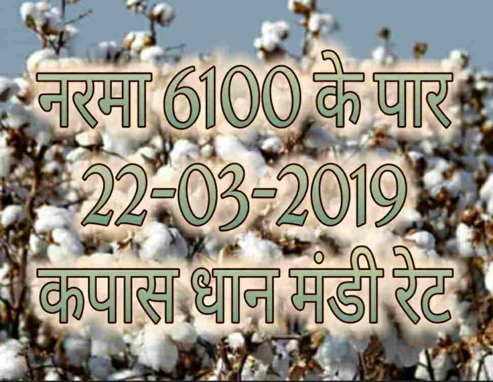 Mandi Bhav 22-03-2019 | Mandi Rates