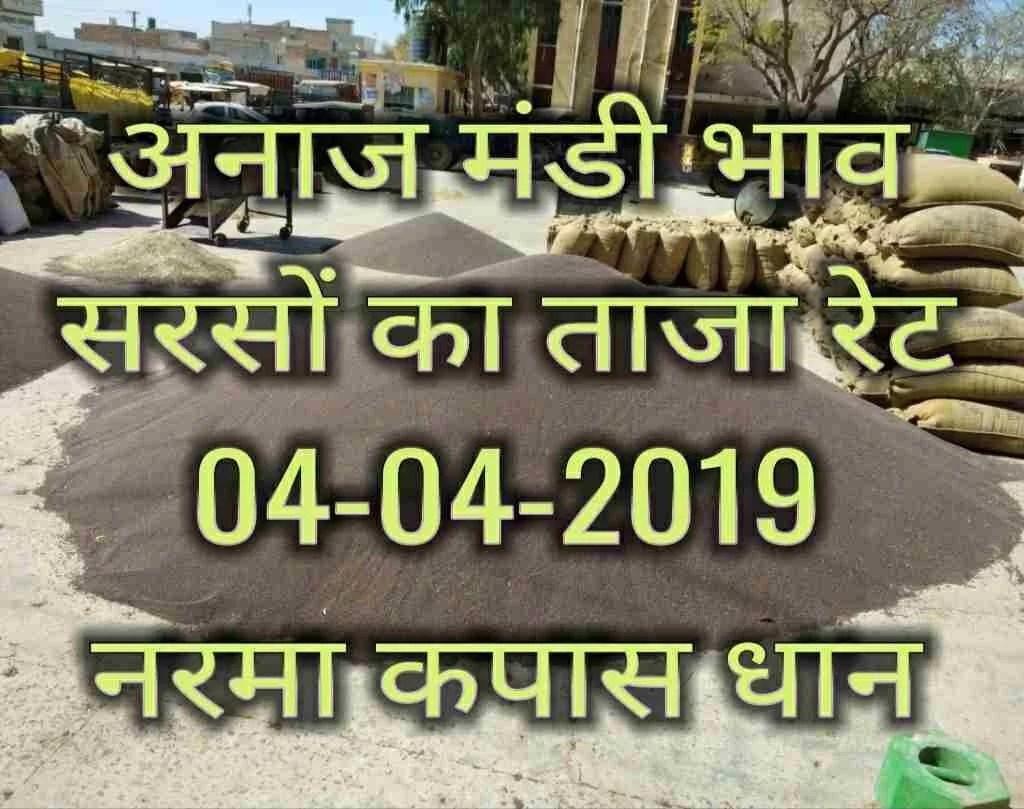 Mandi Bhav 04-04-2019 | Sarso Mandi Rates