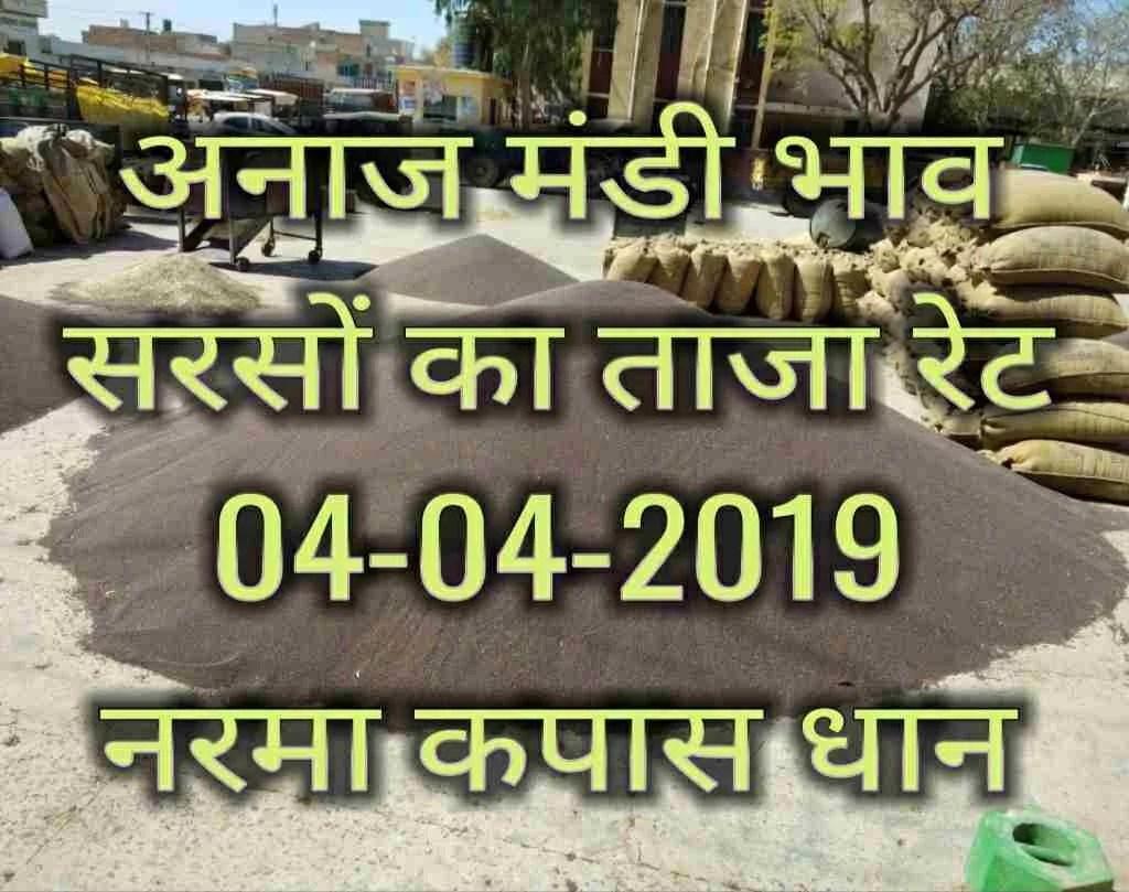 सरसों भाव today , Mandi Bhav 04-04-2019 , Anaj mandi Rates