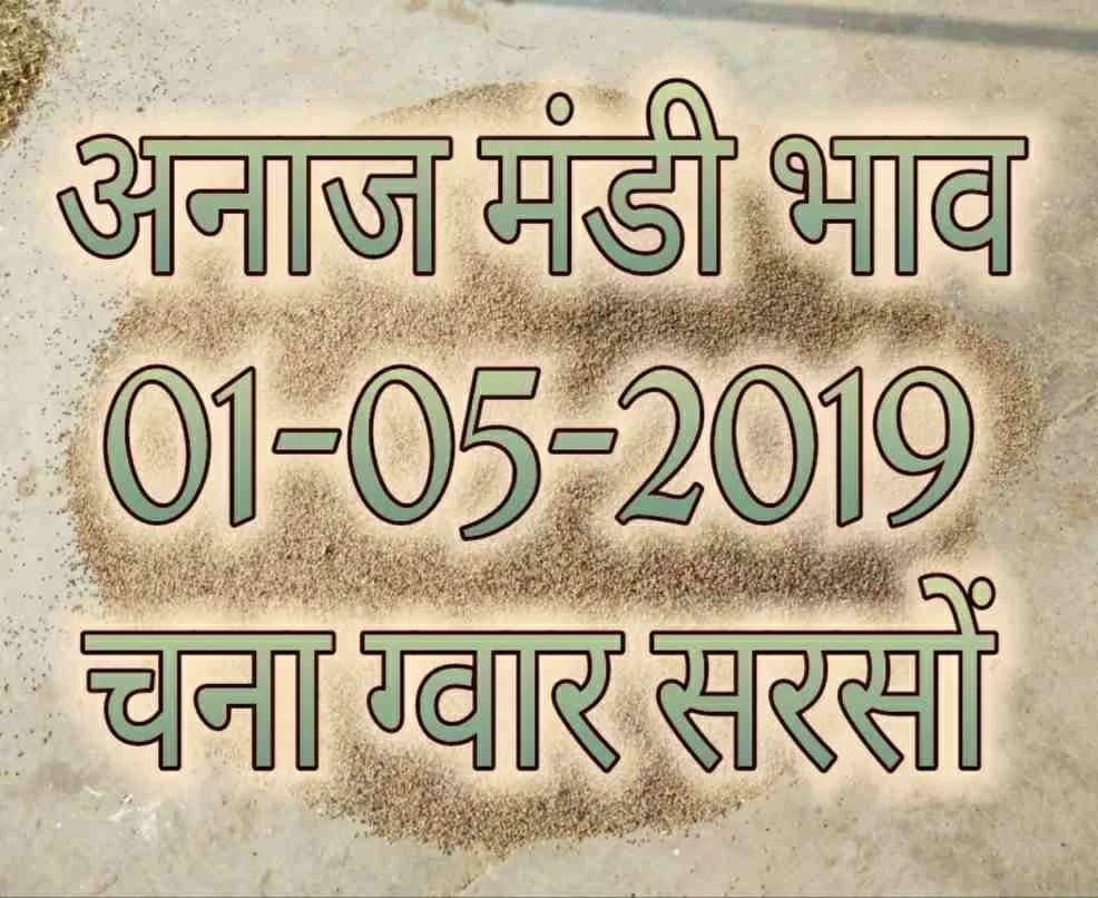 Mandi Bhav 01-05-2019 , May 2019 Sarso Bhav