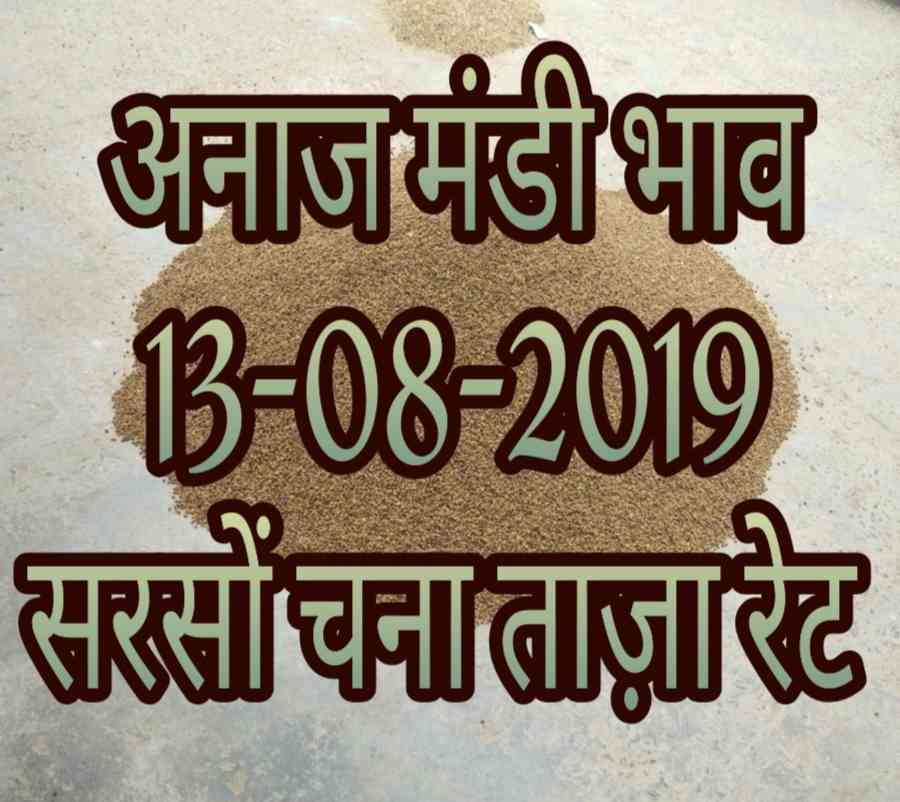 Dhaan Mandi Bhav 13-08-2019 Today Mandi Rates