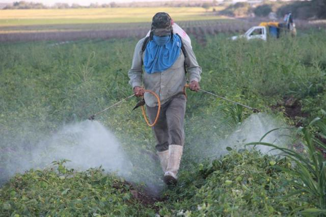प्रतिबन्धित कीटनाशकों की सूची (List of prohibited insecticides)