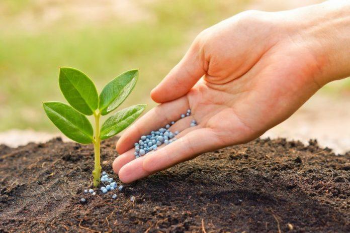 जैविक कृषि नीति कृषि विभाग मध्य प्रदेश द्वारा जारी हिंदी में पढ़ें