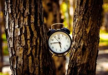 今日から実践!〝無駄な時間〟を〝有効な時間〟に変える方法【7選】