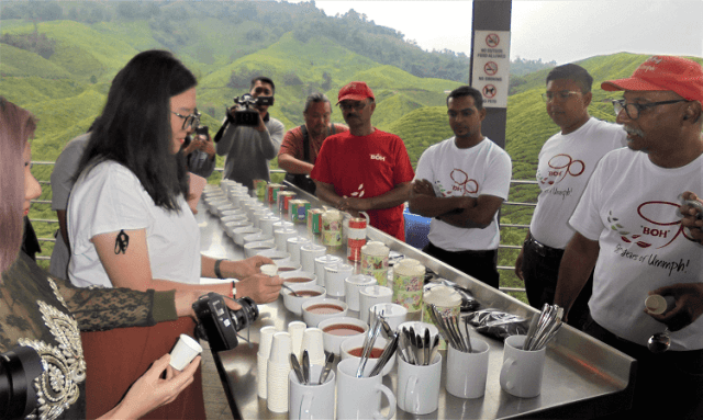 BOH Tea Testing di Sungei Palas Tea Centre, Cameron Highlands,