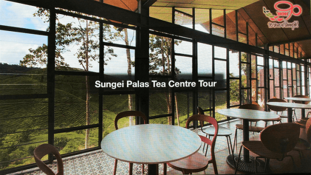 BOH Sungei Palas Tea Centre Cameron Highlands,