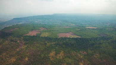 Photo of LONG LOST ANCIENT CITY UNCOVERED DEEP IN CAMBODIAN JUNGLE