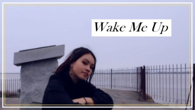 Photo of New Music Video: Vinlisa- Wake Me Up (ft. mXX rené) Original song