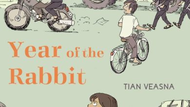 Photo of Graphic Novel Review: 'Year of the Rabbit' by Tian Veasna from Drawn+Quarterly