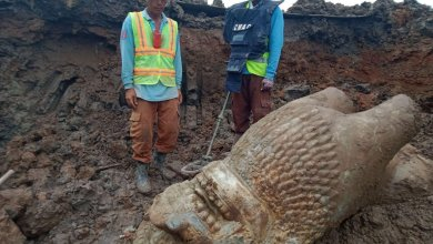 Photo of Old stone lion found near Wat Phnom