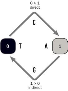 SEMANTICSWITCH-schema0-1