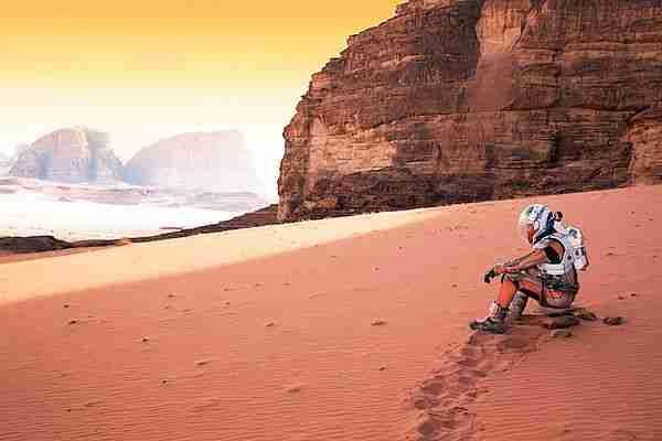 Mars'ta nasıl yaşayacak bitki 3