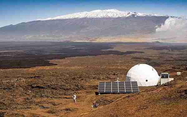 Mars'ta nasıl yaşayacak bitki 6