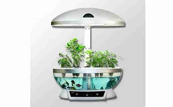 Oda tipi hidroponik bitki yetiştirme saksıları organik enerji santrallerine dönüşecek.