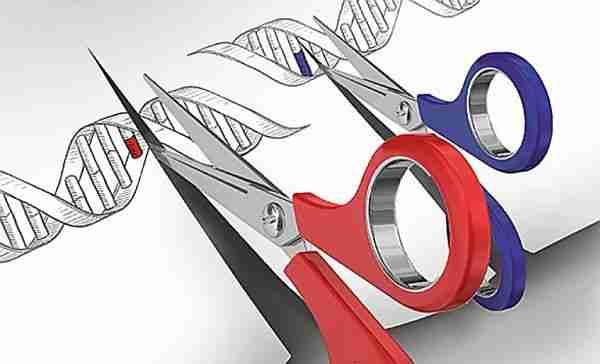 crispr-cas9-crispr_cas9-gen_tedavisi-kök_hücre