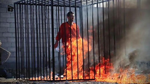 Image result for ISIS executions