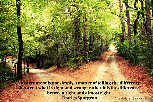 Discernment is not simply a matter of telling the difference between what is right and wrong; rather it is the difference between right and almost right.