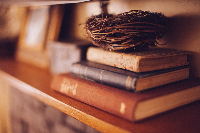 Books and birds nest