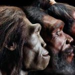 Charles Darwin y la evolución del ser humano