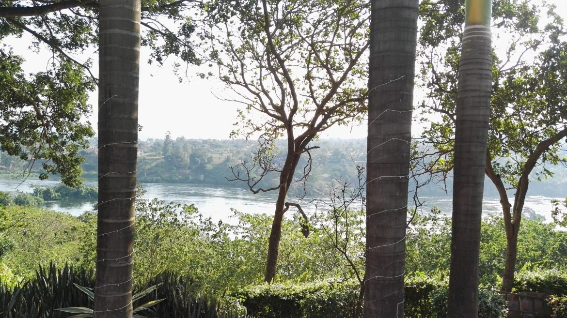 View of The Nile from the resort..jpg