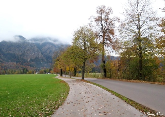 Autumn path - Near Neuschwanstein Castle. Photo: TongMai