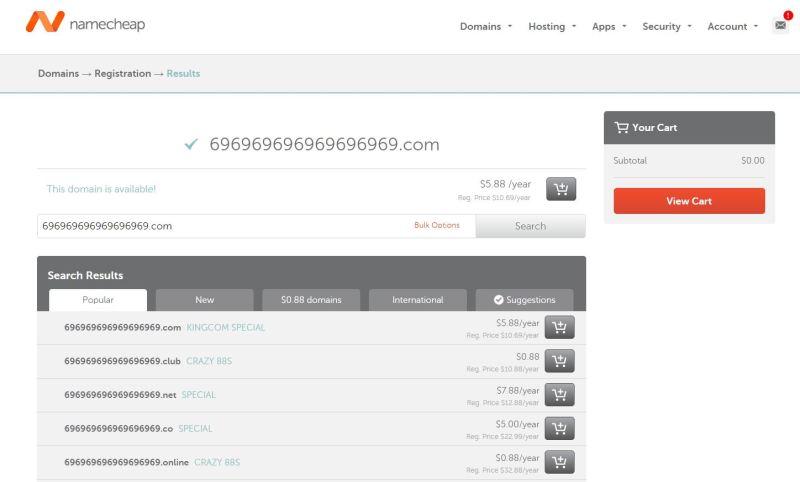 namecheap_purchase_new_domain